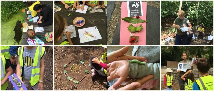 Forest School for children